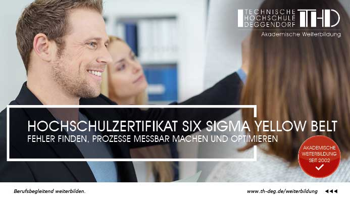 Six Sigma Yellow Belt Zertifizierung