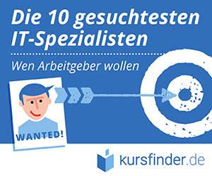 Infografik IT-Berufe Teaser