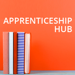 findcourses apprenticeship hub