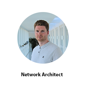 network architect