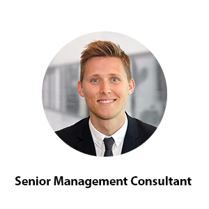 Senior Management Consultant