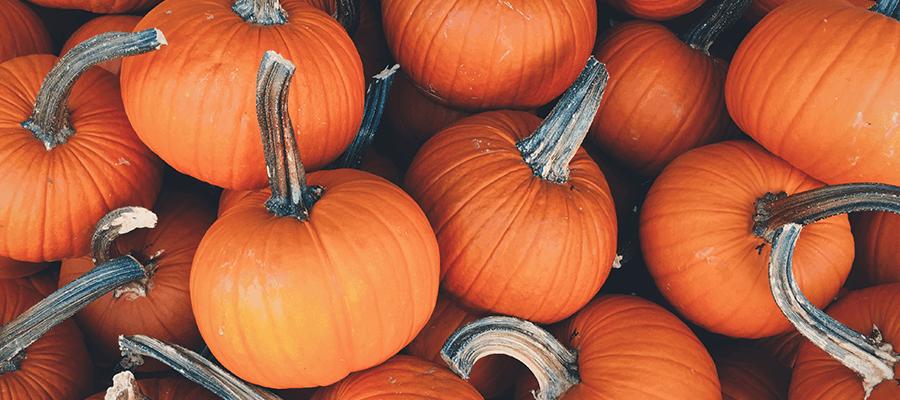 6 enkla och billiga Halloween-utklädnader! 31234321ff0d8