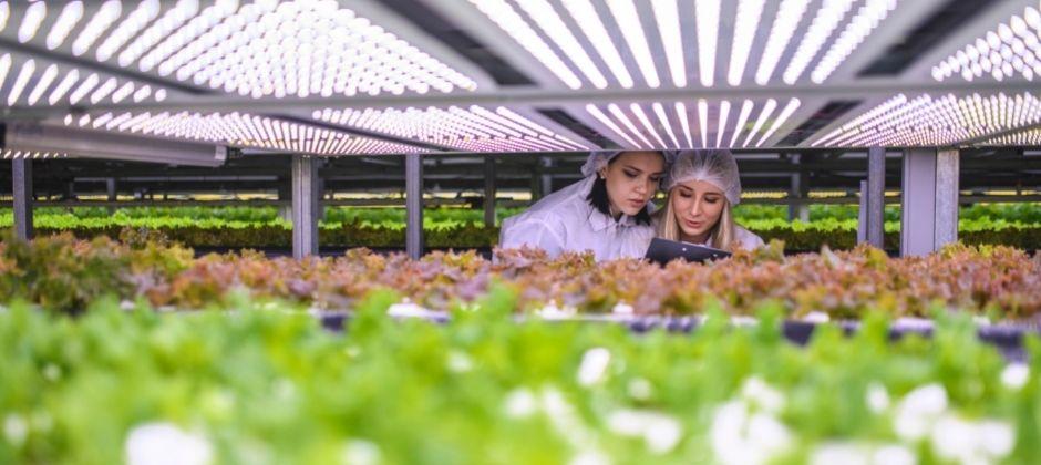 eco friendly universities