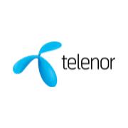 /studieguiden/moed-en-virksomhed/telenor/