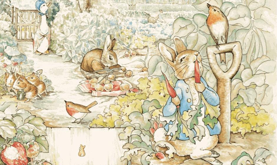 Garden scene with Peter Rabbit eating radishes