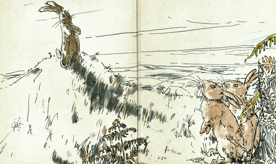 Illustration of the Velveteen Rabbit