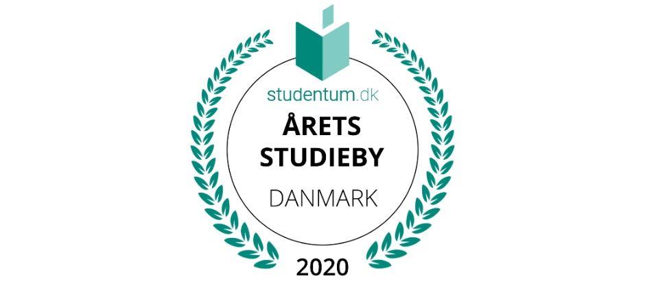 Årets Studieby - Byens omdømme