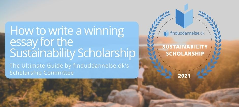 How to write a winning essay for the Sustainability Scholarship