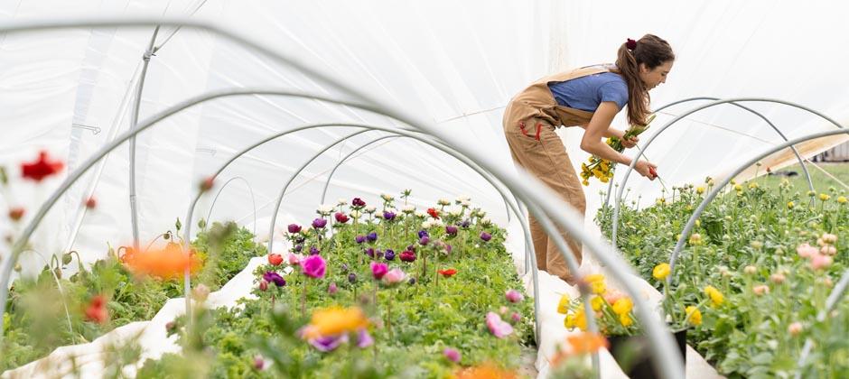 Tjej som odlar blommor