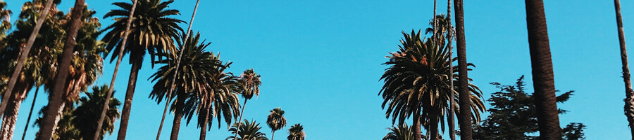 Dating aktiviteter i San Francisco Hur man avbryter MTN Dating Tips