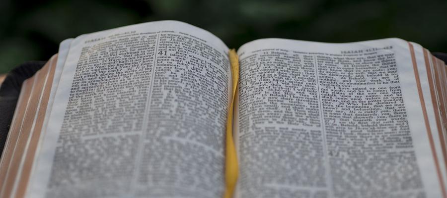 Teologian pääsykokeet ja todistusvalinta