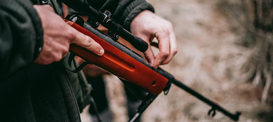 Vapenlicens