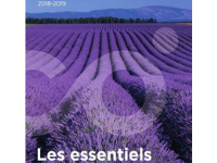 Comundi Catalogue 2019