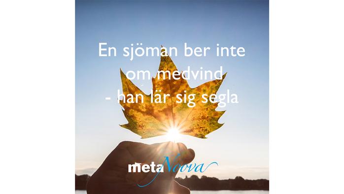 MetaNoova