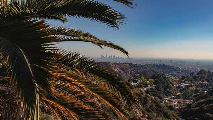Gustav studerade till Mäklare i Los Angeles