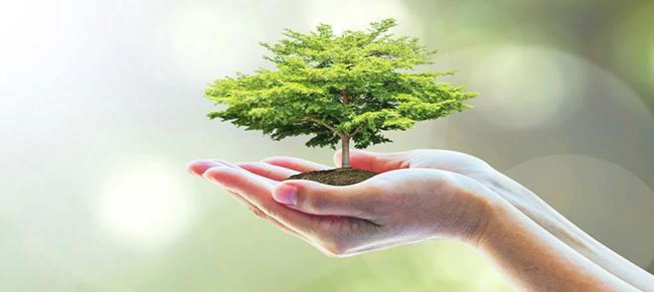 MA in Environmental Studies