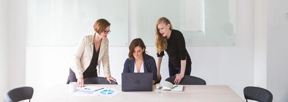 PM Professional™ -valmennusohjelma | Adapro