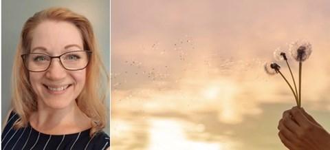 Mindfulness grundkurs -  onlinecoachning med Jenny Törnblom