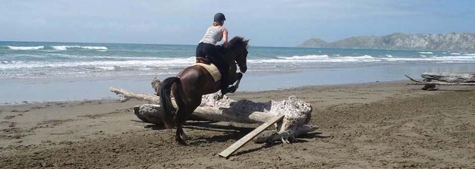 Ranchstay | New Zealand
