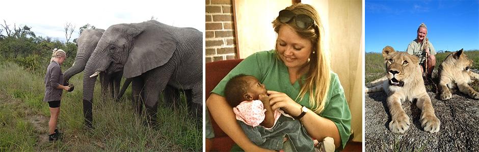 elefanter og løver