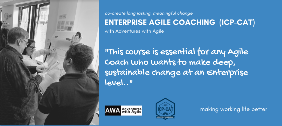 Enterprise Agile Coaching