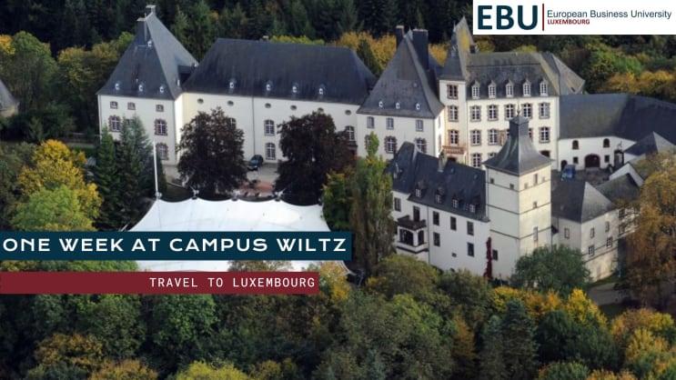 European Business University