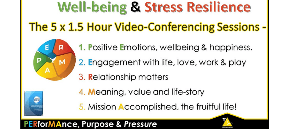On-Line Wellbeing & Stress Resilience - PERMA