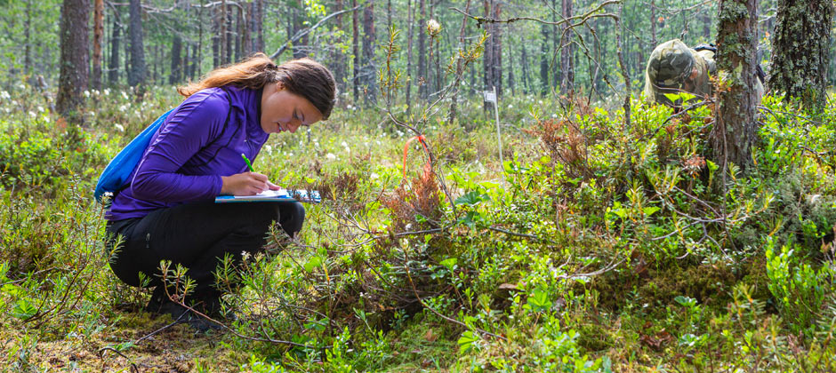 Masters in Forest Ecology and Sustainable Management