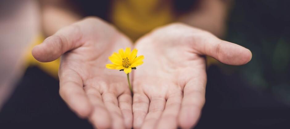 Kursleiter/-in Achtsamkeit und Meditation