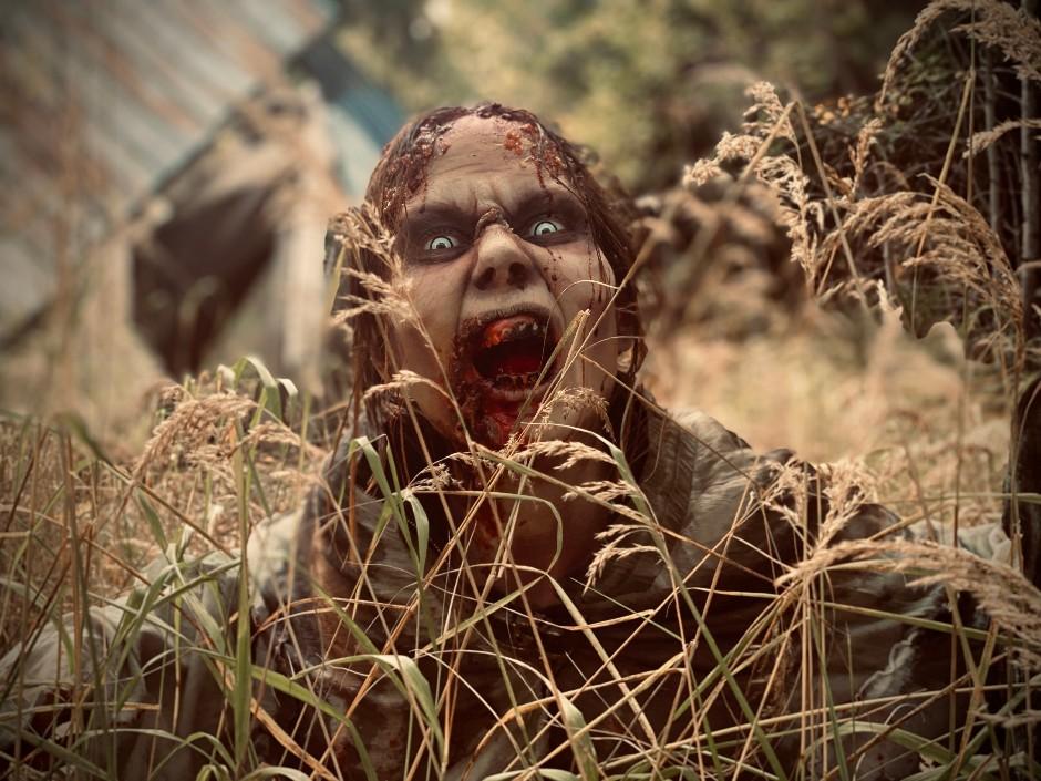 Lär dig hur du skapar en läskig Zombie med FX Makeup under denna 1-dags kurs!
