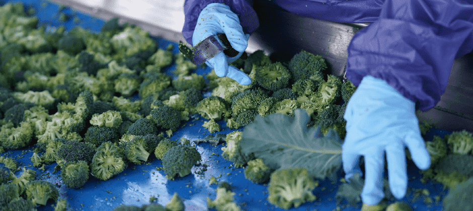 Essentials of Produce Safety (Online Course)