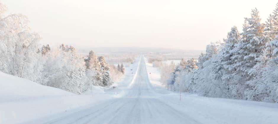 arctic hospitality leder