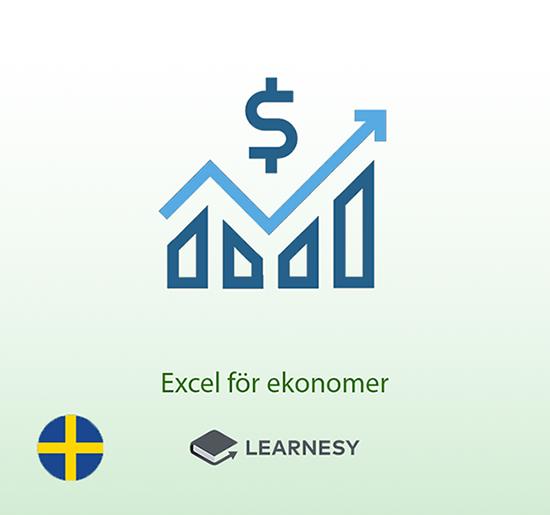 Excelkurs för ekonomer