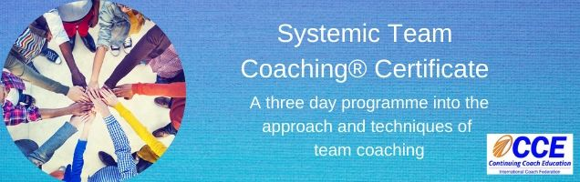 Systemic Team Coaching Certificate