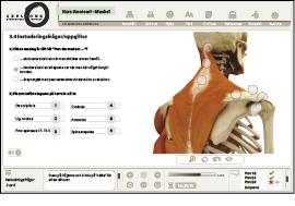medicinsk massageterapeut singlar på nätet