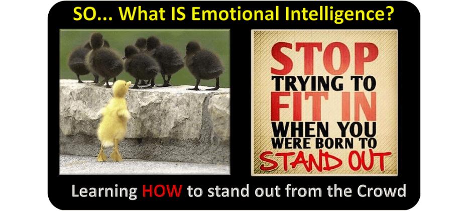 Train the Trainer: MTC Emotional Intelligence