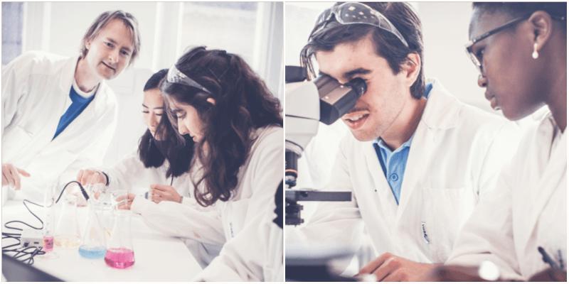 Naturvetenskapsprogrammet, Naturvetenskap