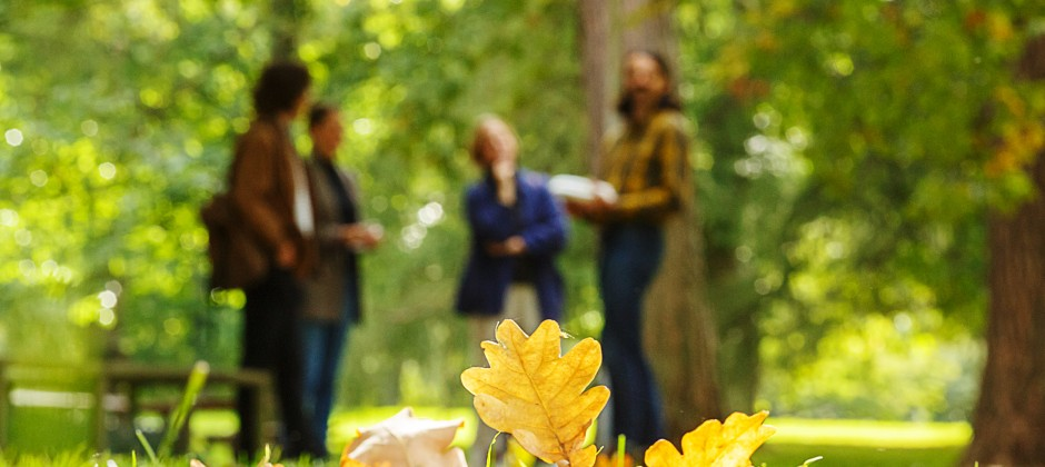 Masters in Outdoor Environments for Health and Well-Being