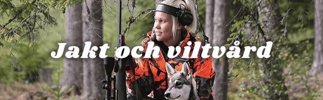 Naturbruksprogrammet, Skog: Jakt & viltvård