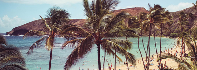 EF Opintovuosi ulkomailla   Honolulu / EF Education First