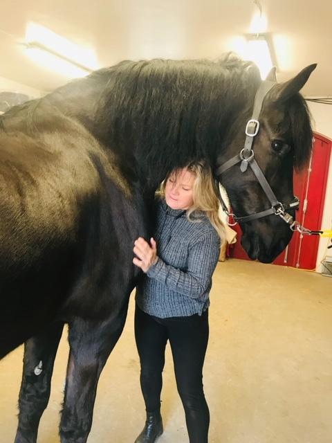 Eva Okeijn häst