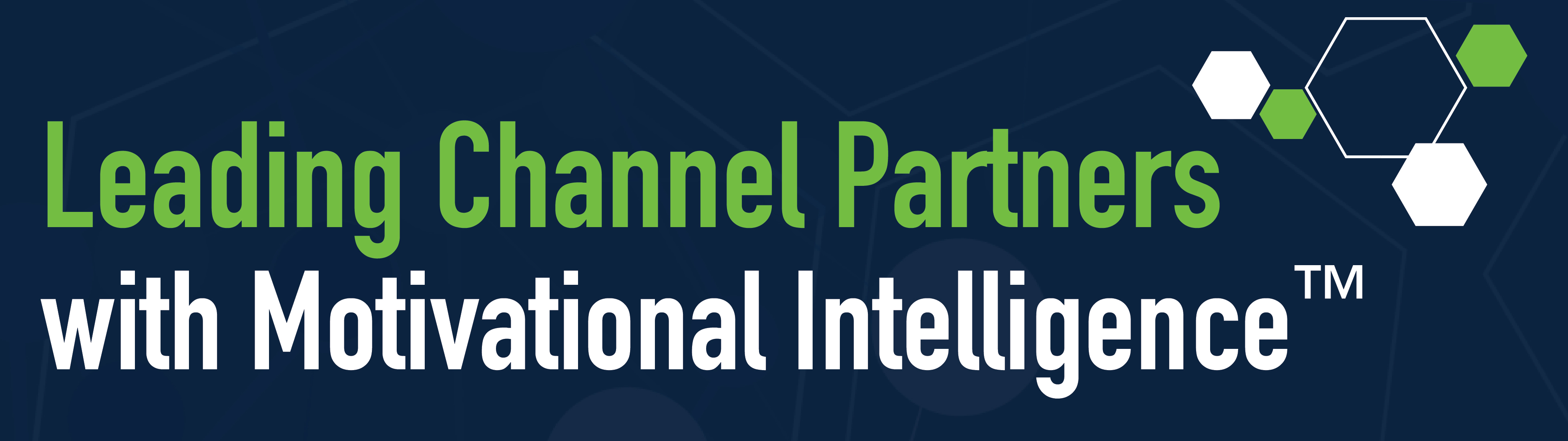Leading Channel Partners with Motivational Intelligence™
