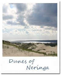 Study_in_Lithuania_Dunes_of_Neringa