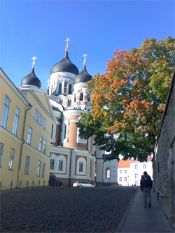 Experience beautiful Tallinn with TUT!