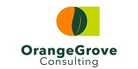 Orange Grove Consulting - Gender Equity & Inclusion