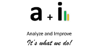 Analyze and Improve Inc.