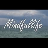 Stresskompetence, Fokus og Indre Klarhed