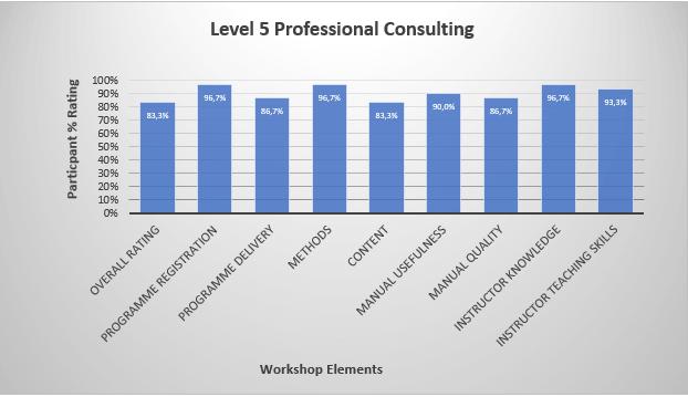 Level 5 Consulting