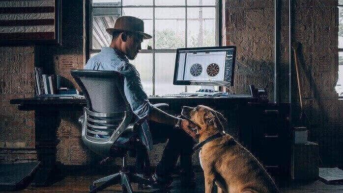 Darum sind Hunde am Arbeitsplatz so beliebt