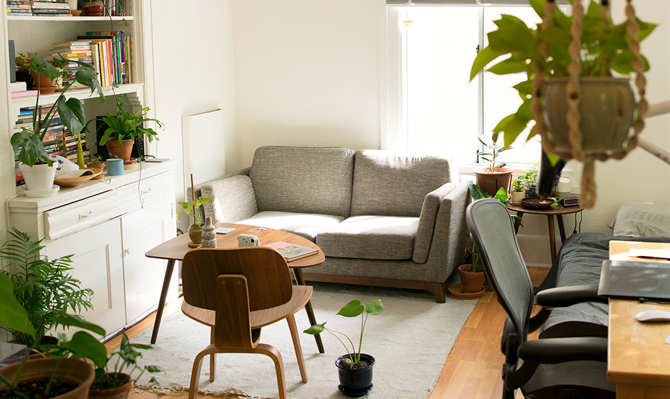 A beautifully designed living room with lots of indoor plants